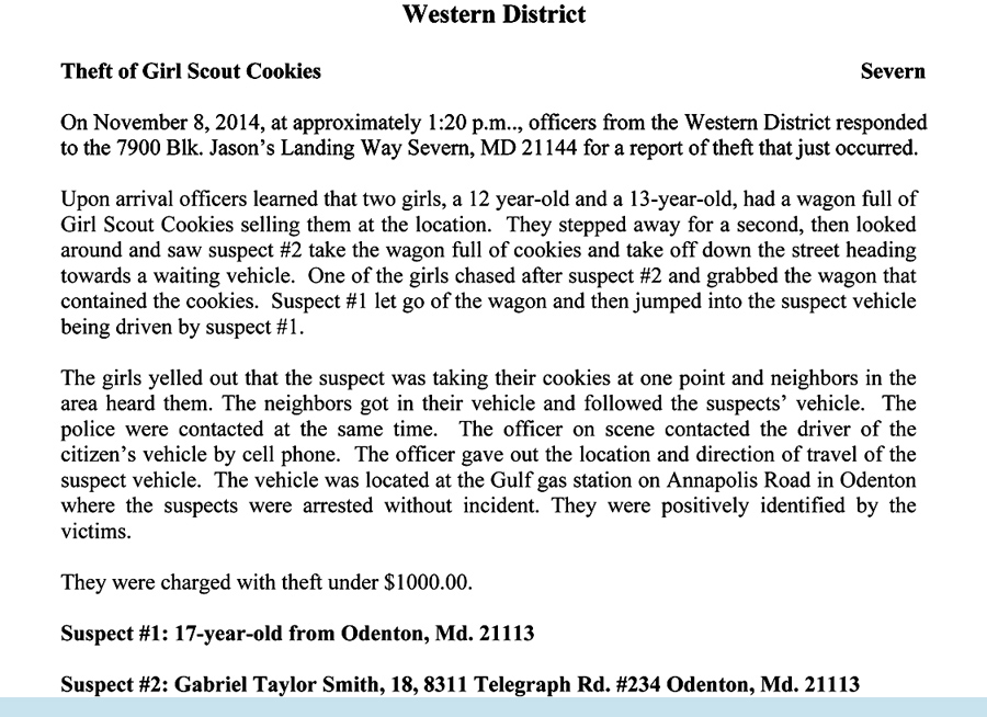 two girl scout heroes defend cookies from would be thieves