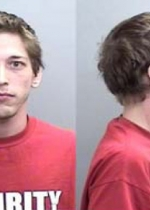 Arrested for possession of a concealed weapon in a vehicle, pot possession, and