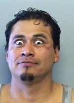 Arrested for public intoxication, vandalism, and resisting arrest.
