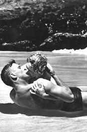 Sandy, Randy Duo In Lewd Beach Romp Bust