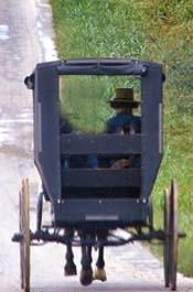 Amish Sexting