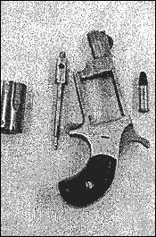 Gun In Vagina