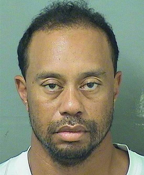 Tiger Woods mug shot