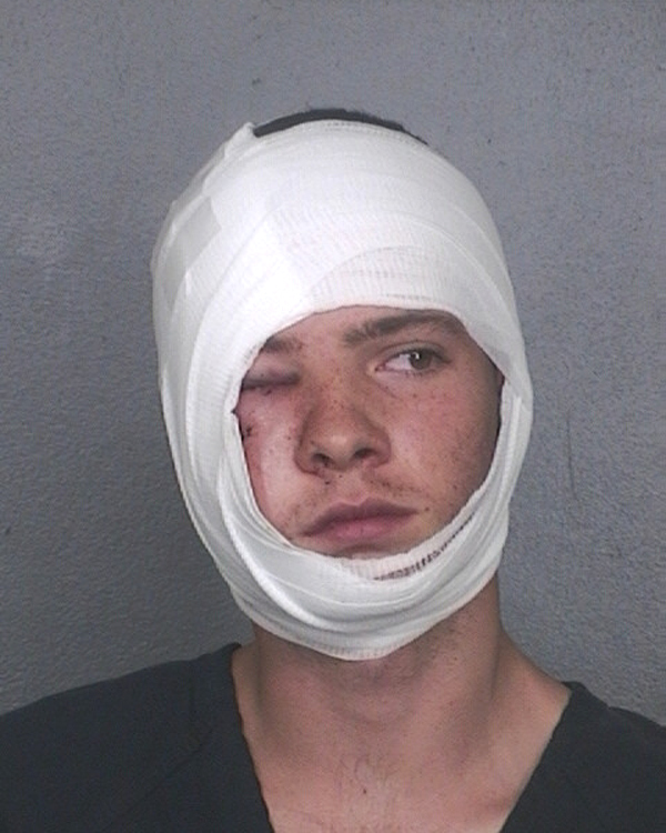 Arrested for burglary, theft, and trespassing.